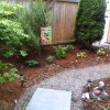 New back yard-path